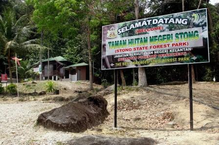 Taman Hutan Negeri Stong